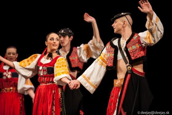 slnecnica-nov2013-5256