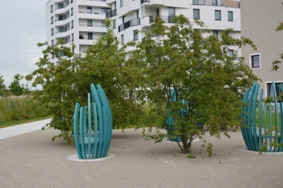 modré lavice a muchovníky
