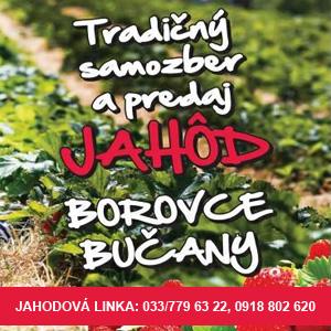 Plantex Jahody 1