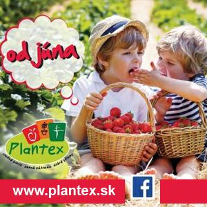 Plantex Jahody 2