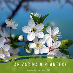 Plantex2