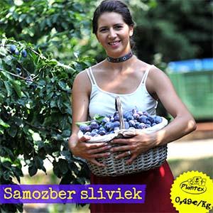 Plantex Slivky