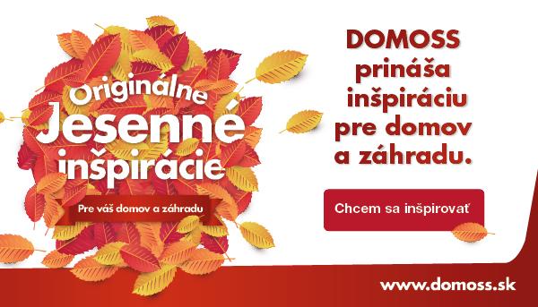 Domoss jesen 2019