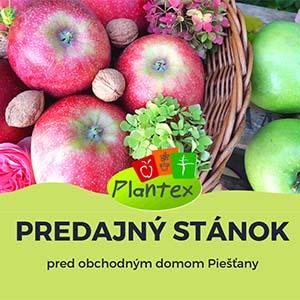 Plantex predajny stanok 2