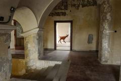 Artrooms-Moravany2020-1